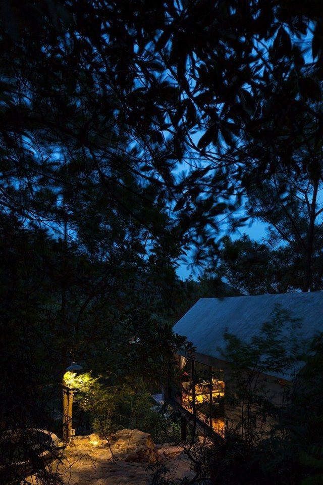 designboom-forest-house-12.jpg