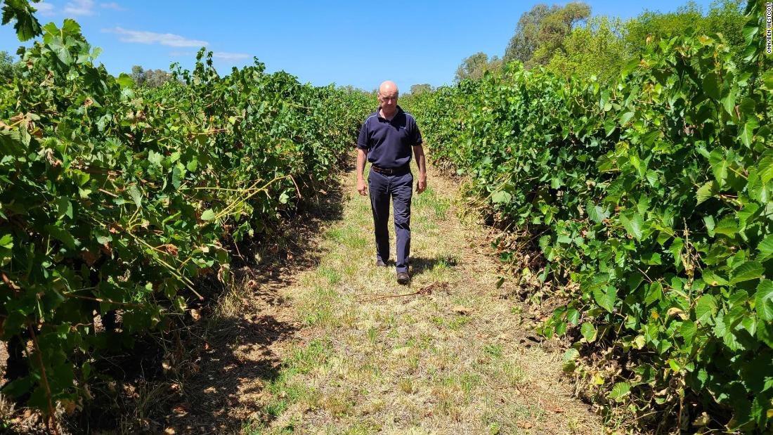 210216165342-01-australia-china-wine-purbrick-super-169.jpg