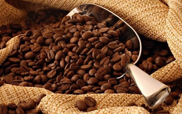 Caffeine co tac dung chong lai khoi u ac tinh o nguoi hinh anh 1