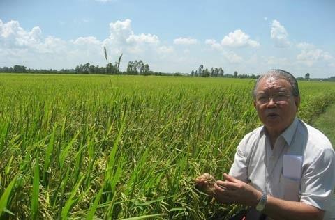 GS Võ Tòng Xuân: 'Cho phép tích tụ ruộng đất thì cần phải sửa Luật Đất đai'