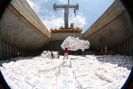 Xuất khẩu gạo sang Trung Quốc giảm mạnh