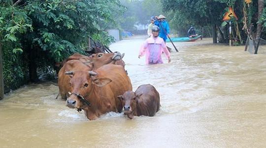 Thủ tướng trực tiếp chỉ đạo khắc phục hậu quả mưa lũ ở miền Trung