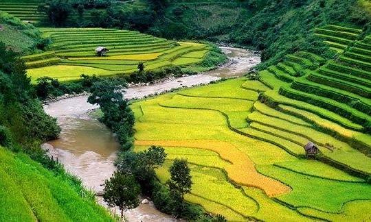 Việt Nam, điểm đến lý tưởng của 2017
