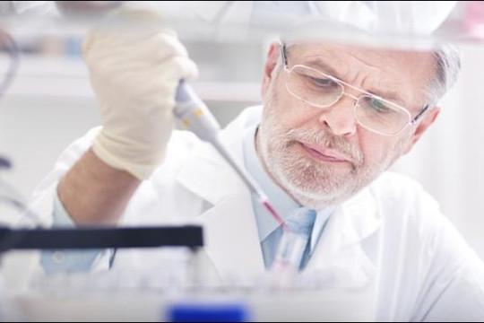 Đã xác định được 'trách nhiệm' của từng loại vi khuẩn đường ruột