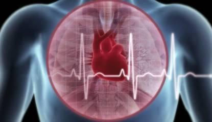 Đột biến gien là lý do khiến tim ngừng đập gây đột tử