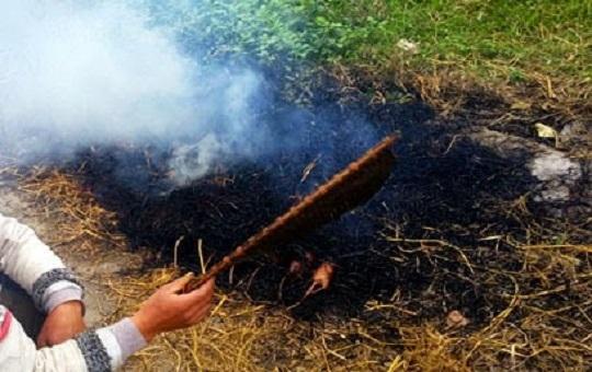 Xem đốt chuột đồng, bé gái 14 tuổi bị bỏng toàn thân