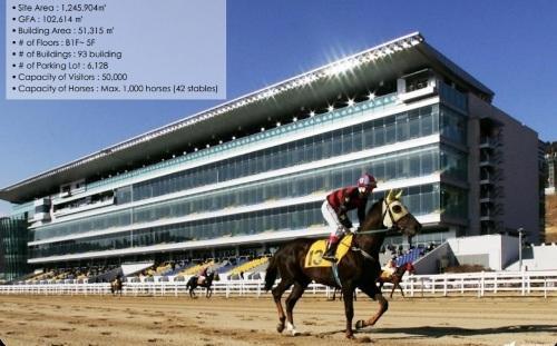 Mở trường đua ngựa 500 triệu USD tại Cần Thơ: Kỳ vọng lắm, quan ngại nhiều