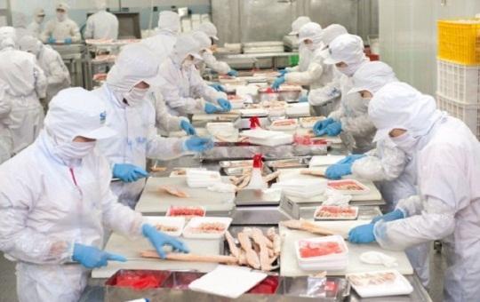 TP.HCM sẽ hỗ trợ các doanh nghiệp tuân thủ an toàn thực phẩm