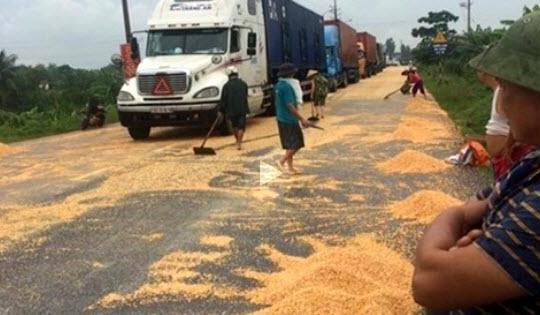 Xử phạt đám đông hôi hàng tấn ngô rơi từ container mặc tài xế khóc van xin?