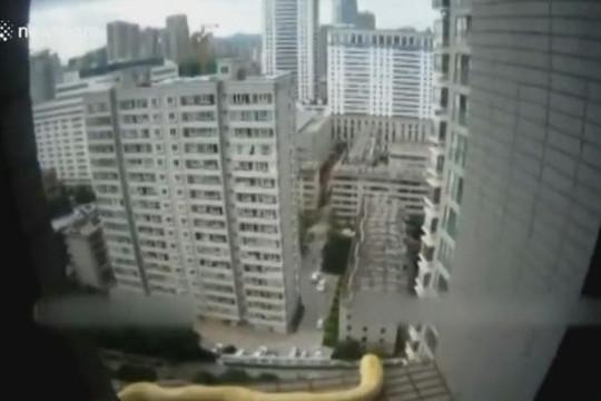 Giải cứu trăn mắc kẹt bên ngoài tầng 19 tòa nhà chọc trời