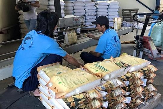 Cắt bớt quyền hạn của VFA để tạo công bằng cho DN xuất khẩu gạo