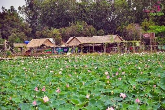 Đồng Tháp xây dựng Khu du lịch sinh thái Đồng Tháp Mười