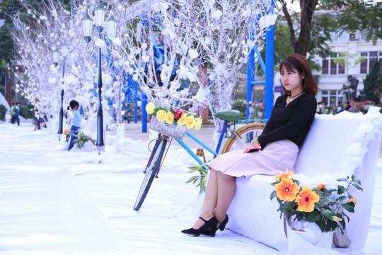 Giới trẻ Hà Thành thích thú chụp ảnh với 'Vườn hoa tuyết' chuẩn bị cho đêm Giáng sinh