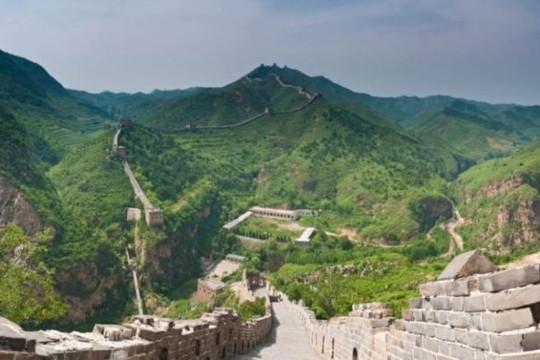 Trung Quốc tham vọng trồng khu rừng to bằng Ireland