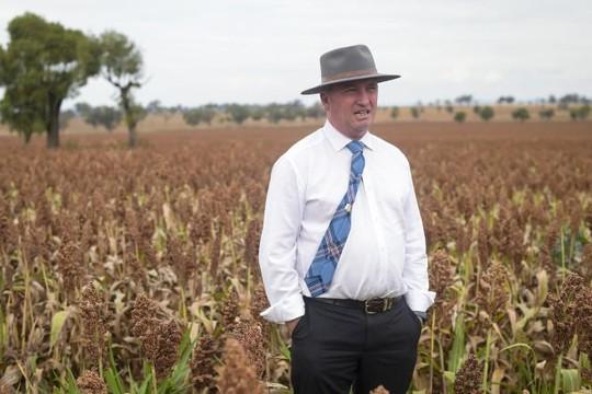 Cựu Phó Thủ tướng Úc: 'Sẽ yêu con của người tình, dù cha đứa trẻ là ai'