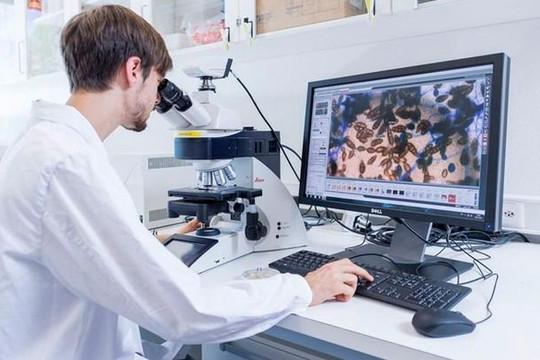 Tế bào của sinh vật có thể truyền được trên 2 bit thông tin
