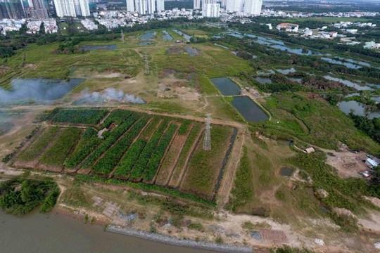 Vụ bán đất công không qua đấu giá cho tư nhân: Ông Tất Thành Cang có liên đới trách nhiệm