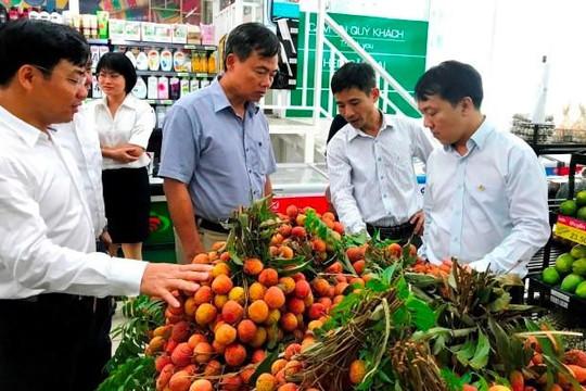 Siêu thị TP.HCM nhập hàng trăm tấn vải thiều Lục Ngạn, Thanh Hà