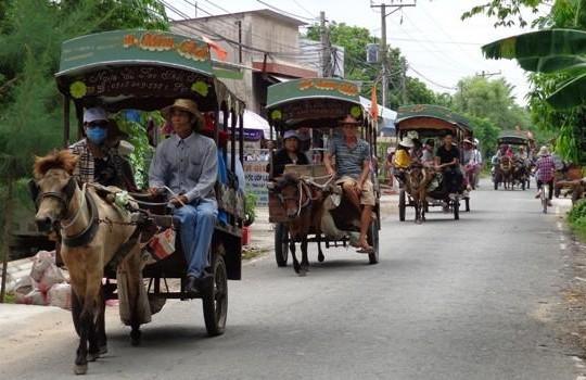 Tiền Giang: Bất an với dịch vụ xe ngựa du lịch