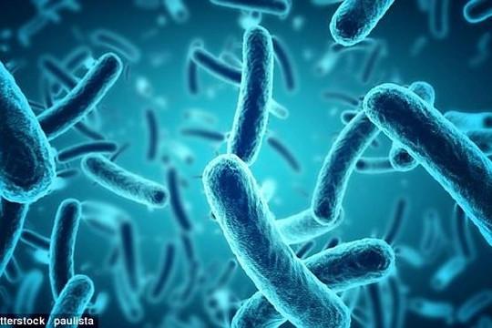 Dùng vi khuẩn gây tiêu chảy để phát triển 'pin sinh học'