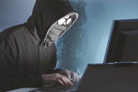 Hà Tĩnh: Bắt hai thanh niên lừa đảo qua Internet
