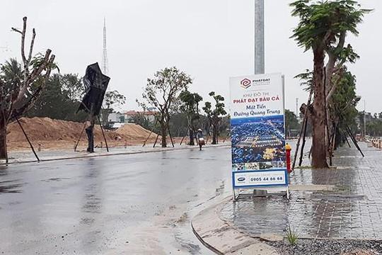 Bài 3: Chính quyền Quảng Ngãi 'phớt lờ' HĐND tỉnh, lấy hàng chục ha đất lúa