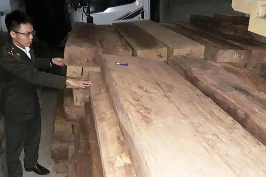 Quảng Bình: Bắt giữ 2 xe chở hơn 9m3 gỗ lậu