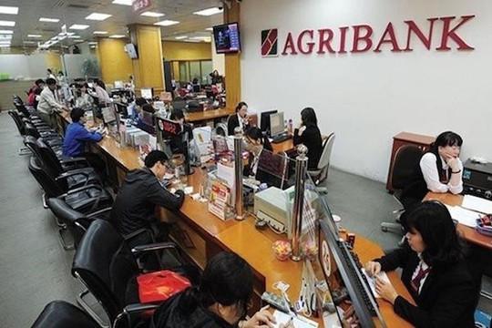 Phó Thủ tướng yêu cầu đẩy nhanh cổ phần hóa Agribank, Vicem, HUD
