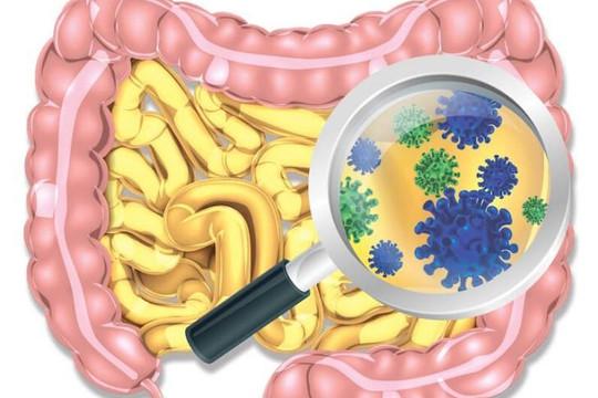 Phát hiện thêm 2.000 loài vi khuẩn mới trong cơ thể người