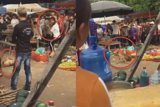 Clip chó mẹ nuôi 5 con vào chợ Lạng Sơn kiếm ăn bị ném đá và đánh chết