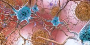 Mỹ phát triển công cụ phân tử để chữa bệnh thoái hóa thần kinh