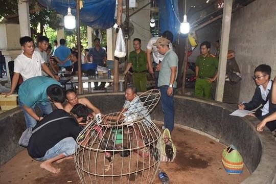Thừa Thiên-Huế: Xóa sổ trường gà cờ bạc quy mô hàng trăm triệu đồng