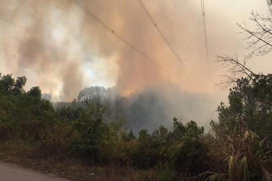 Cháy rừng, nhà máy điện thiếu than... khả năng cắt điện nhiều nơi