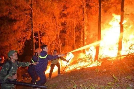 Chùm ảnh: Rừng thông Hà Tĩnh tiếp tục cháy, sơ tán hàng trăm người trong đêm