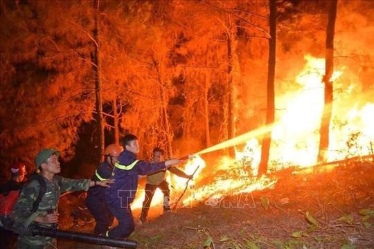 Phó thủ tướng Vương Đình Huệ: Chưa thể dùng trực thăng chữa cháy rừng do điều kiện thời tiết