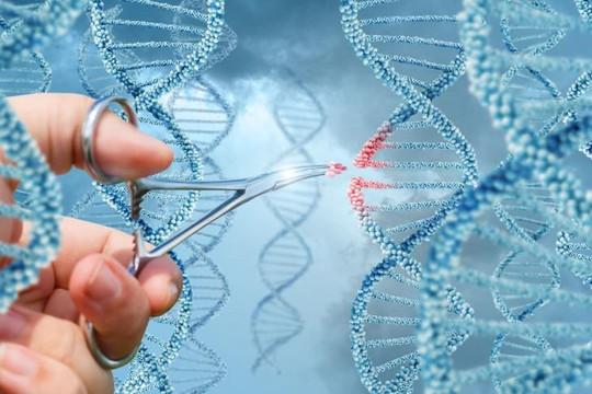 Lần đầu tiên loại được HIV ra khỏi ADN bị nhiễm