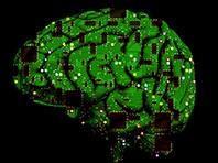 Một bước tiến tới việc phát triển não nhân tạo