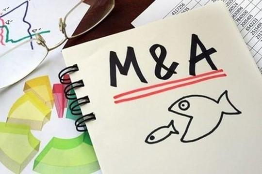 Giá trị M&A năm 2019 dự báo đạt 6,7 tỉ USD
