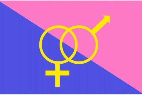 Mỹ: Thêm một sự kiện 'Diễu hành tự hào dị tính' tại bang California
