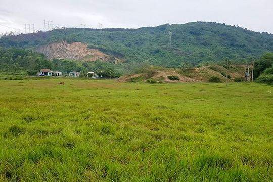 Đà Nẵng: Hơn 600ha đất nông nghiệp gần như bỏ hoang