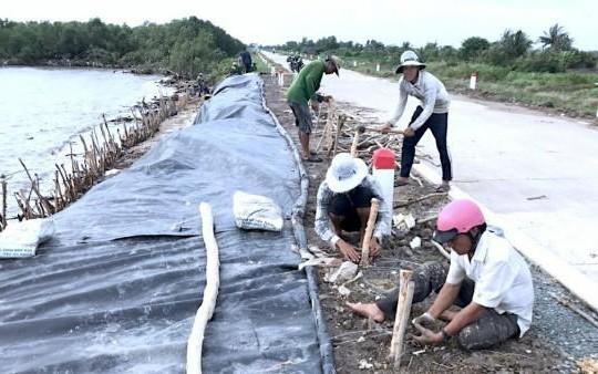 Cà Mau: Cần ban bố tình trạng khẩn cấp để bảo vệ tuyến đê