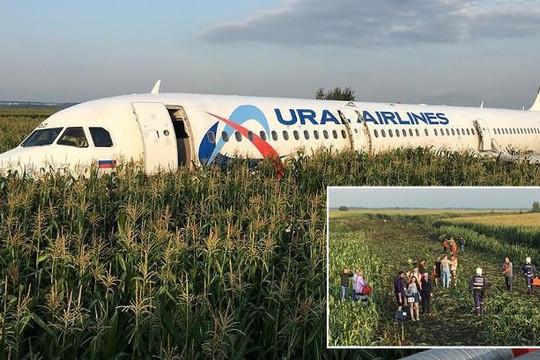 Va phải đàn chim khổng lồ, máy bay chở khách Nga hạ cánh gấp