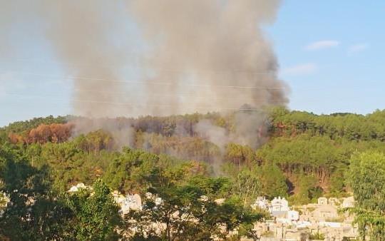 Hàng trăm chiến sĩ dập lửa trên núi Ngũ Phong trong ngày rằm tháng 7