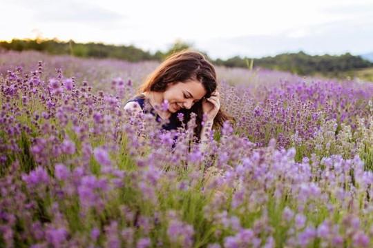 Công dụng làm đẹp của hoa oải hương