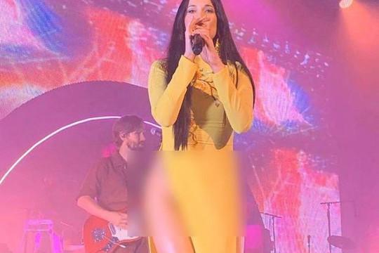 Ngô Thanh Vân, Phạm Hương bức xúc vì nữ ca sĩ Mỹ mặc áo dài không mặc quần, tạo dáng phản cảm