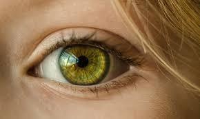 Mỹ cấp phép sử dụng kính áp tròng kiềm chế cận thị cho trẻ