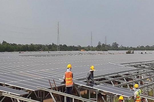 Đấu thầu giá điện mặt trời
