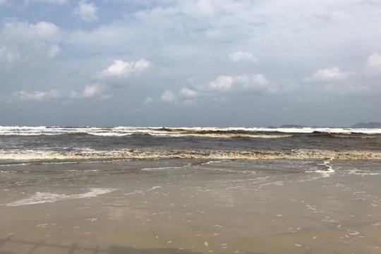Truy tìm nguyên nhân nước biển đổi màu đen ở vịnh Dung Quất