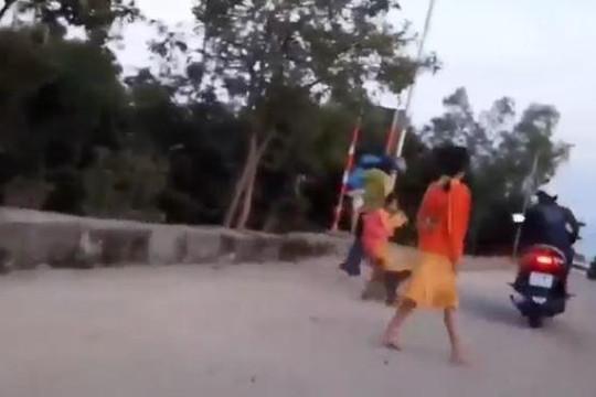 Đàn khỉ đuổi theo người đàn ông, kêu gào đòi lại con