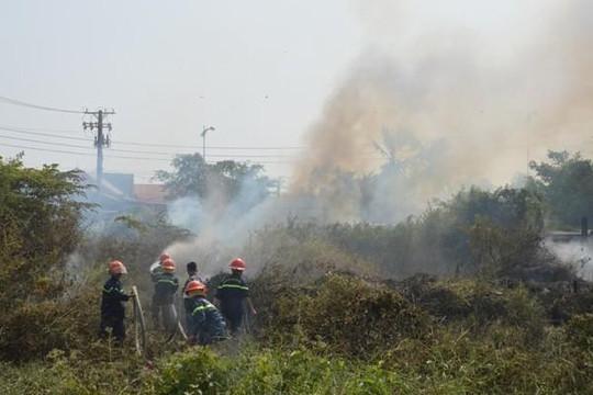 Sóc Trăng: Cháy đồng cỏ khiến khu dân cư hoảng loạn
